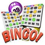 bingo-!