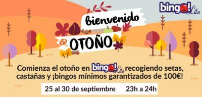 tombola-bingo-100-euros